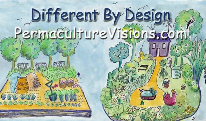 Permaculture Visions